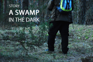 Featured A Swamp In The Dark