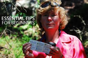 Featured Essential Tips For Beginners kopiera